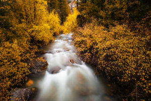 Waterfall, Idaho, Palisades, Autumn, Fall, Landscape, Framed Art, Fine Art Prints, Home, Office, Professional Photography